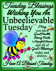 Tuesday Quotes Good Morning, Happy Tuesday Quotes, Good Morning Friends Quotes, Good Morning Beautiful Quotes, Good Morning Prayer, Good Day Quotes, Good Morning Inspirational Quotes, Its Friday Quotes, Good Morning Messages