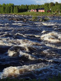 Kukkolaforsen rapid in Tornio River in Lapland Sweden Tourism, Lapland Finland, Visit Santa, Travel Images, Beautiful Beaches, Denmark, Nature Photography, Scenery, Destinations