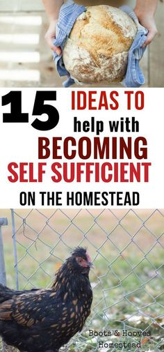 Being self sufficient is something that is very important to my family. But how do we make self sufficiency work on the homestead? 15 ideas to get started on today! Homestead Farm, Homestead Living, Homestead Survival, Survival Prepping, Survival Skills, Emergency Preparedness, Survival Shelter, Doomsday Prepping, Emergency Preparation