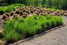 Garten der Sinne in Bildern ... / Garten der Sinne - Merzig (D) / Gärten in Deutschland / Unsere Gärten / Gärten ohne Grenzen / Startseite - Gärten ohne Grenzen