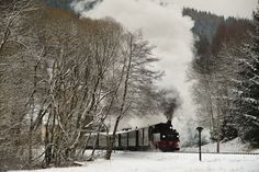 Fresh Snow Fall - After a heavy over night snow fall, snow lies on the roof of the coaches and coats the trees as a Saxon Meyer brings a train out of Schmalzgrube and heads up through the forest to Johstadt. Steam Locomotive, Great Photos, Snow, Train, Fresh, Coaches, Night, Fall, Outdoor