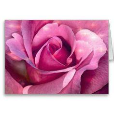 Pink Rose Cards
