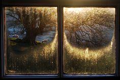 fairytalesandteddybears: thru iced panes on. Female Photographers, Street Photographers, English Country Cottages, Saul Leiter, Through The Window, Window View, Favim, Lake District, My Sunshine