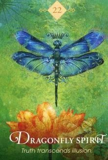 The Spirit Animal Oracle de Colette Baron-Reid Spirit Animal Totem, Animal Spirit Guides, Animal Meanings, Animal Symbolism, Spirit Signs, Animal Medicine, Oracle Tarot, Oracle Deck, Spirited Art