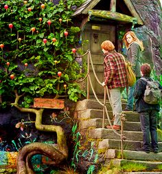 """Front door to the Lovegood House, depicted in """"Harry Potter and the Deathly Hallows: Part 1""""- It has a hippie/witch's cottage aesthetic, similar to many contemporary cob homes."""