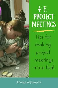 Need help planning project meetings? Keep reading for tips on making meetings education and fun! Preparation is the key to successful meetings! Animal Projects, Projects For Kids, Project Ideas, County Fair Projects, 4 H Club, Help Teaching, Group Activities, Kids Learning, Fundraising