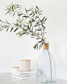 Organic | Natural | Glassware | The Simple Life | Inspiration for the Trend feature, Livingetc September 2015