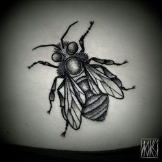 Stunning detail in this fly insect tattoo by Noksi Tattoo