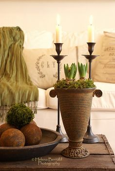 Loving the forced bulbs in the unusual vessel & pillows