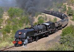 RailPictures.Net Photo: NRZ 395 National Railways of Zimbabawe Steam Garrett at Zabguja, Zimbabwe by Steve Patterson