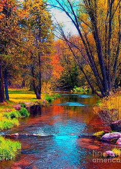 For all of you who love Nature we 25 Exquisite Pictures. There are so many beautiful places in the world that we must visit at least once in a lifetime. Fall Pictures, Nature Pictures, Pretty Pictures, Beautiful World, Beautiful Places, Beautiful Ocean, Beautiful Scenery, Landscape Photography, Nature Photography