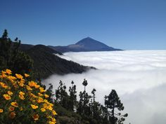 Dream view over the Teide,  #Tenerife #hotel #Costaadeje #Hotellujo