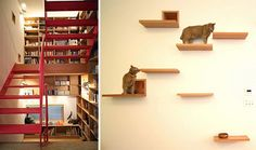 Hometalk :: Cat Heaven Or The Most Creative Cat Spaces Ever!