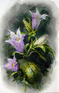 Bellflower watercolor, Bellflower original watercolor painting, Campanula watercolor, Purple flower watercolour, Gift for mother for her