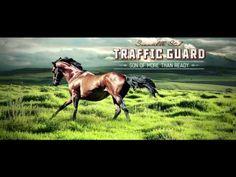 SUMMERHILL SIRES FILM 2012 / 2013 - YouTube Thoroughbred breeding stock amazing cinematography.