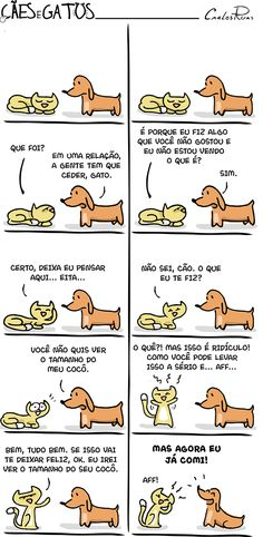 Cães e Gatos – Like Animals, Animals And Pets, Funny Animals, I Love Cats, Crazy Cats, Dachshund Love, Funny Laugh, Cool Pets, Animal Memes