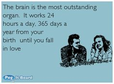 Quote on friendship ecard: The brain is the most outstanding organ.  It works 24 hours a day, 365 days a year from your birth  until you fall in love