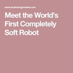 Meet the World's First Completely Soft Robot