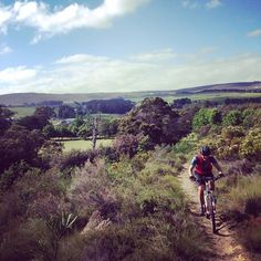 Singletrack Sunday at Hermanus trails Trail, Sunday, Adventure, Sport, Mountains, Pretty, Instagram Posts, Pictures, Beautiful