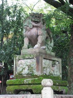 Kyoto, Japan : Guardian lion-dog statues (狛犬 komainu)