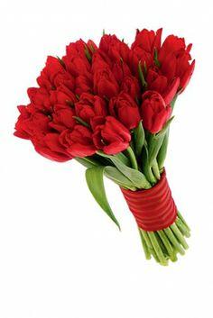 robale un suspiro con un ramo de tulipanes httpwwwdonregalo