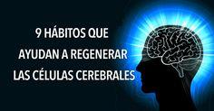 No es ningún secreto que nuestros cerebros tienden a desacelerarse a medida que envejecemos. Después de los 25 años, comenzamos a perder naturalmente las células cerebrales. La buena noticia es que los científicos han descubierto que usted puede generar nuevas células cerebrales a lo largo de su vida. Hay varios hábitos que usted puede adoptar para promover el crecimiento de nuevas células y mantener su cerebro tan en forma como siempre. Aquí hay nueve hábitos que ayudan a regenerar las…