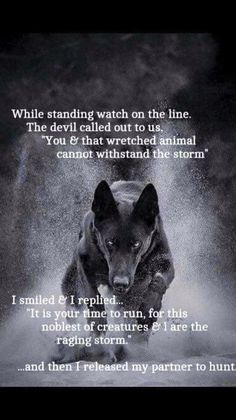 Dogs have fought side by side with us for thousands of years, only animal that would take on hell itself for us. I believe God gave us dogs to show us what loyalty & love really are. Wisdom Quotes, True Quotes, Great Quotes, Funny Quotes, Inspirational Quotes, Qoutes, Dalai Lama, Lone Wolf Quotes, Of Wolf And Man
