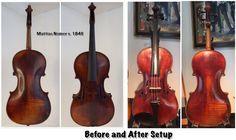 Violin, Music Instruments, Musical Instruments