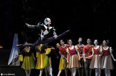 El Lago de los Cisnes. BNS Ballet Nacional Sodre 2013. Foto Santiago Barreiro  Auditorio Nacional Sodre. Montevideo. Uruguay.