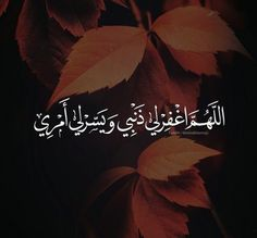 Arabic Words, Arabic Quotes, Islamic Quotes, Islamic Art, Lilly Flower, Morning Prayers, Islam Quran, Great Words, Photo Quotes