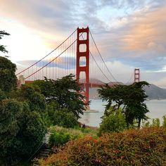 San Francisco Travel Guide San Francisco Travel Guide, Golden Gate Bridge, Travelling, World, Dios, The World
