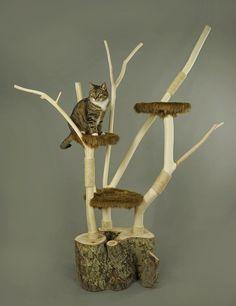 DIY Catlounge cat tree, natuurhout kattenmeubel