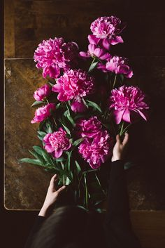 Peonies by Babes in