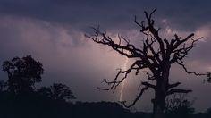 Synoptycy ostrzegają przed burzami nad Polską