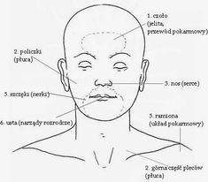Objawy chorób wypisane na twarzy. | PSYCHOLOGIA WYGLĄDU Self Improvement, Biology, Health, How To Make, Reiki, Weddings, Google, Diet, Health Care