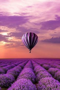 On my bucket list is flying in a hot air balloon. I chose this picture because my favorite color is purple and it looked really pretty. I want to go on a hot air balloon because I want to see the world from above! Beautiful World, Beautiful Places, Beautiful Pictures, Purple Haze, Shades Of Purple, Pink Sky, Purple Aesthetic, All Things Purple, Purple Stuff