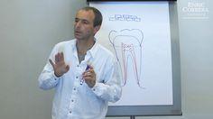 Enric Corbera nos explica de modo resumido el método de la BioNeuroEmoción y cómo este está relacionado con la salud bucodental. Posteriormente, Christian Be...
