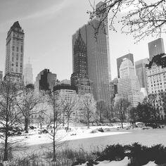 Winterwonderland Central Park #winterwonderland #centralpark #nyc #manhattan #432park #snow #snowzilla #blueskyinblackandwhite #blackandwhite #sun #instagram #instadaily #instagood by ferdinandweigel