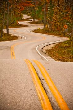 winding road entering forest - maybe should enter forest toward the end - or, alternatively, climb mountain?