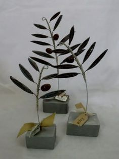 Place Cards, Place Card Holders, Plants, Plant, Planets