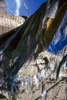 Tsemo Fort and prayer flags, Leh, Ladakh
