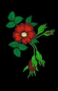 d*ale bunicii!: MODELE DE BRODERII MANUALE SI MECANICE Custom Embroidery, Embroidery Thread, Machine Embroidery Designs, Flower Patterns, Free Design, Hand Embroidery Flowers, Scrappy Quilts, Needlepoint, Doodle Flowers