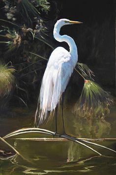 "Great Egret by Dominic Avant Oil ~ 60"" x 40"""