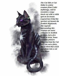 The Cat Sìth or Cat Sidhe is a fairy creature from Celtic mythology, said to resemble a large black cat with a white spot on its breast. Legend has it that the spectral cat haunts the Scottish Highlands. The legends surrounding this creature are more comm Grand Chat, Image Chat, Legends And Myths, Celtic Mythology, Photo Images, Mythological Creatures, Irish Mythology Creatures, Magical Creatures, Gods And Goddesses