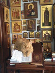 Orthodox Cat is Orthodox (from Hyperdox Herman) Orthodox Prayers, Orthodox Christianity, Catholic Art, Religious Art, Prayer Corner, Home Altar, Church Interior, Altar Decorations, Orthodox Icons
