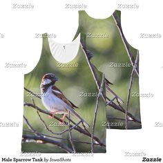Male Sparrow Tank