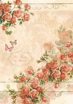 DGR 211 SHABBY COLLECTION PRINTED ON MULBERRY PAPER DGE 211 SHABBY COLLECTION PRINTED ON EASY PAPER
