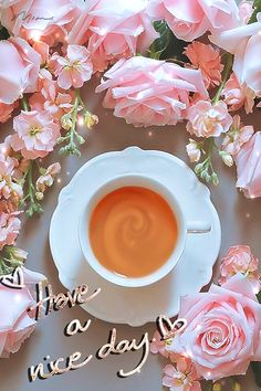Mimi Gif: Have a Nice Day Good Morning Tea, Morning Gif, Good Morning Flowers, Good Morning Friends, Good Morning Greetings, Good Day Gif, Morning Love Quotes, Day For Night, Drinking Tea