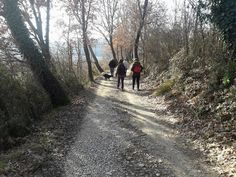 We love to #hike with our friends, Tuscany is a great land with special natural ways to discover. #nature #responsibletravel #sustainable