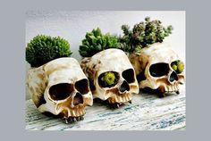 Plant telepathy
